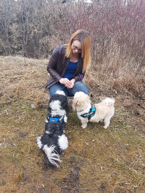 Edmonton Dog Trainer Suzanne Jobse