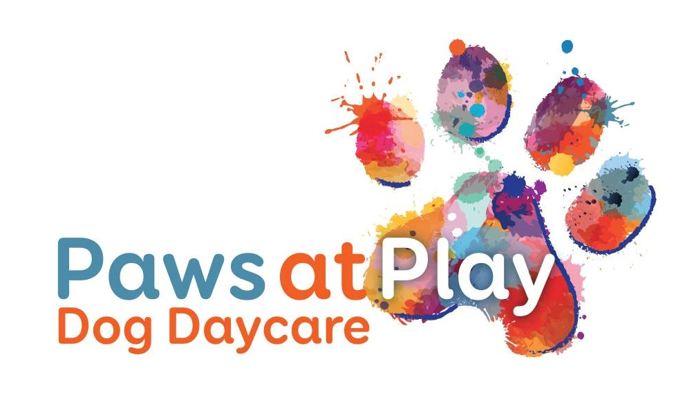 Paws at Play Dog Daycare Edmonton